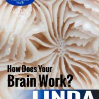 How Does the Brain Work